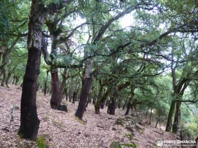 El Bierzo;Busmayor;León;pueblos con encanto torrelaguna botas de montaña camino